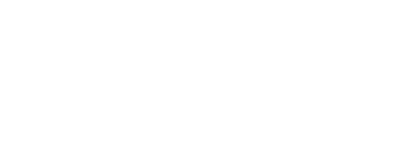 navigator-consulting